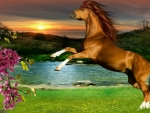 ~*~ Horse ~*~