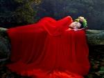 Asleep in Eden