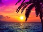 Sea at Sunrise