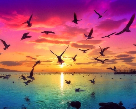 Flying at Dawn - colorful, flying birds, dawn, love four seasons, attractions in dreams, creative pre-made, sky, sea, paradise, summer, nature, sunrise, beauty of nature