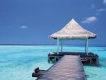 Hut in the Sea