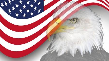 Eagle And US Flag