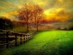 Country yard at dusk