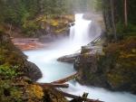 Misty Forest Waterfall