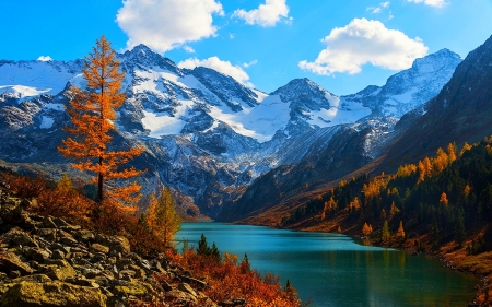 Altai Mountains - lakes, autumn, morning view, beautiful, trees, clouds, Russia, mountains, forests, snowy peaks