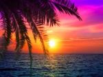 Dawn at Seashore