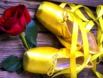 Yellow Ballet with Rose