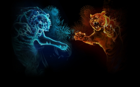 Fire And Ice Tigers Other Abstract Background Wallpapers On