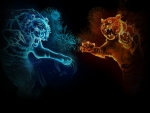 fire and ice tigers