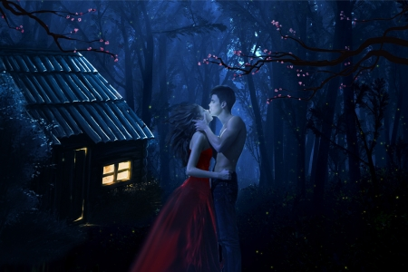 love - forest, romance, night, love