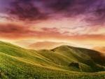 Multicolor Hill