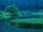 Lake Biwa