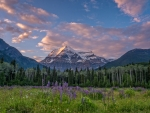 Mount Robson, Canadian Rockies, British Columbia