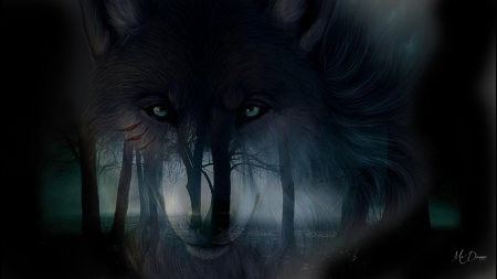 Dark Forest Dark Wolf - Forests & Nature Background ...