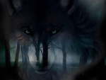Dark Forest Dark Wolf