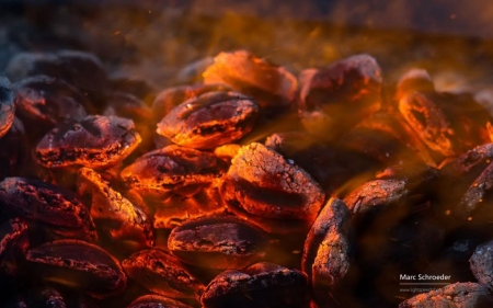 Glowing charcoal II. - fire, photography, burn, flames, wallpaper, abstract
