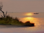 ~*~ Little Island ~*~