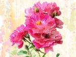 Bright Pink Summer