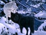 Snow Wolfs