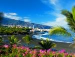 Rest on Tenerife island