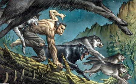 Logan And Wolf pack - forest, marvel, wolverine, wolves