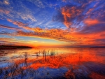 Rigour Sunset