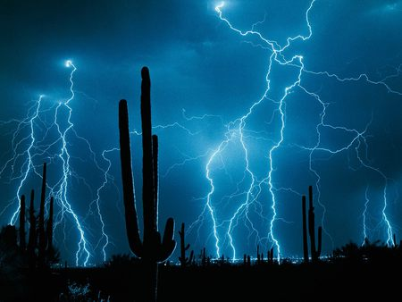 WEATHER - forces, lightening, fantasy, wallpaper, 3dand cg, blue, cacti, night, desert, strike, lighting, force, bluesky, sky, storm, abstract, cactus, lightning strikes, lightning, deserts, dark, nature, blue sky