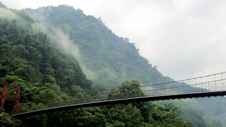 Suspension bridge - nature, Suspension bridge, moutain, fog