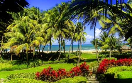 Tropical paradise - grass, breeze, beautiful, sea, beach, tropics, rest, vacation, exotic, ocean, relax, palms, paradise, summer, garden, sands, coast