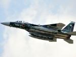 Mitsubishi F-15DJ Combat Jet