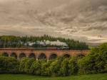 Cornwood Viaduct, England