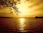 evenings last rays