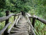 Rustic Handmade Bridge