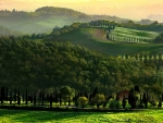 Splendor Nature