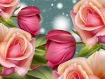 Bright Roses of Summer