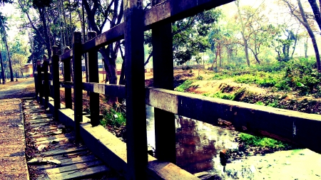 A wooden overbridge - photography, morning, greenery, bridges