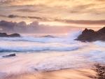 wild ocean waves