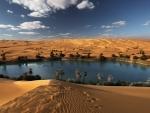 oasis libyan desert