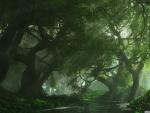 beautiful forest lake