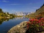 Nature paradise
