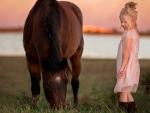 Cowgirl Starter