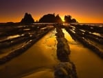 Olympic National Park,Washington