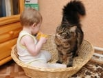 Listen,This Basket isn't big Enough for Both of us...!
