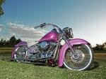 2003-Harley-Davidson-Heritage-Softail
