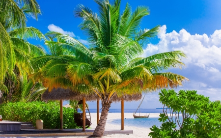 Tropical Paradise - beach, boat, paradise, swing, palm trees