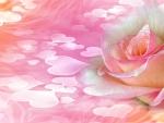 ~*~ Pink Rose ~*~