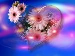 ~*~ Pink Daisies ~*~