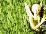 Nature's Fairie