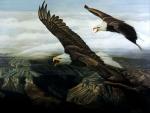Eagle's Echo