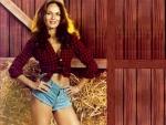Cowgirl Daisy Duke